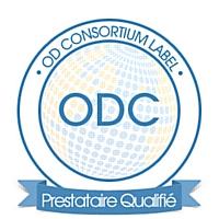 Offshore Developpement crée un label de qualité pour les centres d'appels àl'étranger